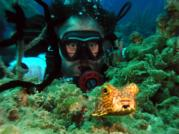 Tony & Puffer at Little San Salvador Bahamas