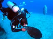 Gustavo kisses his Black Grouper Friend at the Egale Wreck Roatan Honduras