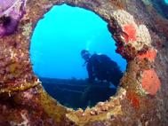 Breven in the Porthole of the Miami Rita wreck Bahamas